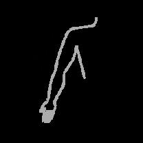 kasivars